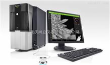 高分辨率專業版電子顯微鏡