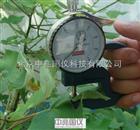 YH-1植物叶片厚度测定仪YH-1表层记录仪