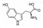 5-羟色胺酸详细说明