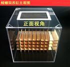 蟑螂饲养盒 疾控设备 郑州厂商