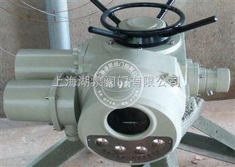 DZW120-24多回转电动执行器
