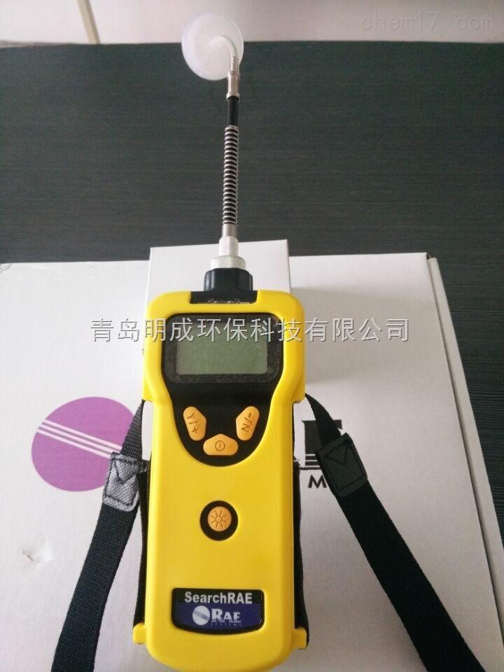 美华瑞PGM-1600可燃气有毒气体检测仪
