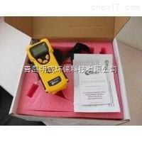 价格公道的MiniRAE 3000 VOC检测仪