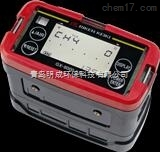 GX-8000-日本理研五合一气体检测仪 