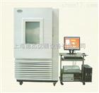 DG-200耐臭氧老化试验机