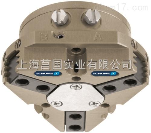 PZN 40高保持力机械手0303308