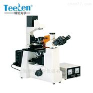 荧光显微镜 DXY-1