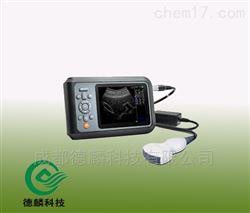 DLZD05-BCV6+S背膘测孕仪