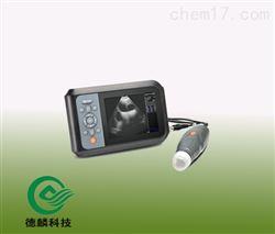 DLZD05-BCV5+S背膘测孕仪