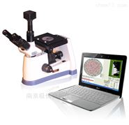 XJP-407数码金相分析仪