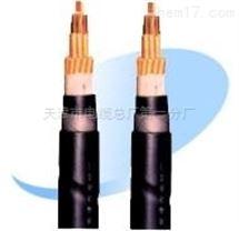 阻燃耐火控制电缆NH-KVV22