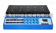 ZNCL-S-10D智能十点磁力(加热板)搅拌器