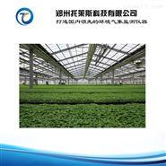 托莱斯 智能温室大棚控制系统全程指导安装