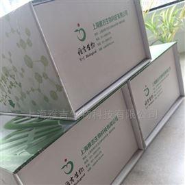 兔子基质金属蛋白酶9Elisa试剂盒