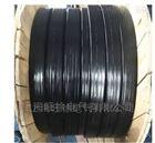 硅橡膠扁平電纜