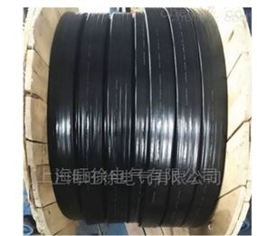 YG系列硅橡胶扁平电缆