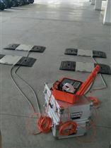 RS-L汽车轴重仪