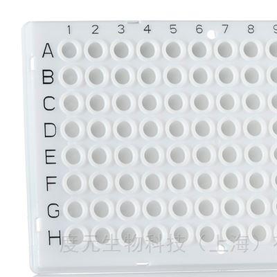Roche LC480專用PCR板
