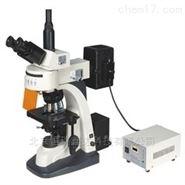 北京数码荧光显微镜