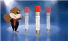 BEAVER Cell Free DNATubes核酸保存管
