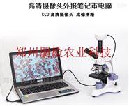 PJ-BCH植物病害快速诊断仪