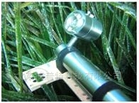 叶绿素荧光仪实用分析