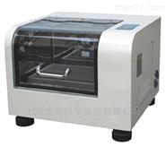 QJ-200台式全温度恒温摇床