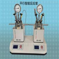 YZPR-100*2微型反应釜