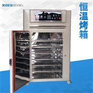 工业小型恒温烘箱东莞工厂直销供应