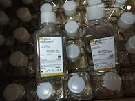 C10010500BTGibco细胞培养基PBS缓冲液500ml