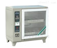 ZFX-10AZFX-10A自控砖瓦泛霜箱--上海雷韵
