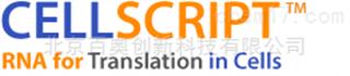 cellscript专业代理