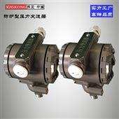 XZPT-PAG-1壓力變送器 P型新產品 新工藝廠家直銷