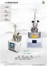 河南优惠100ML聚合反应器