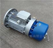 工厂直销紫光BMA7134刹车电动机价
