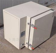 DHT-5200A高温鼓风干燥箱  500度高温箱
