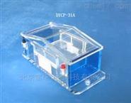 北京PCR電泳RNA電泳槽