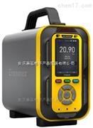CJDZ600手提式多功能高精度氟利昂分析儀