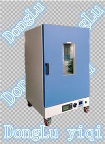 DGG-9240A30段液显记录数据双重保护干燥箱