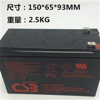 HRL1234WF2FRCSB蓄电池HRL1234WF2FR