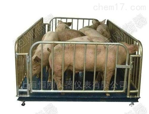 上海动物电子秤厂家,防抖动电子畜牧秤