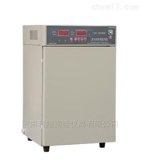 隔水式恒温培育箱微生物细菌培养箱