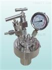 CF系列简易小型不锈钢高压反应釜