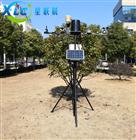 农业气象监测站自动气象站XCQG-6G生产厂家
