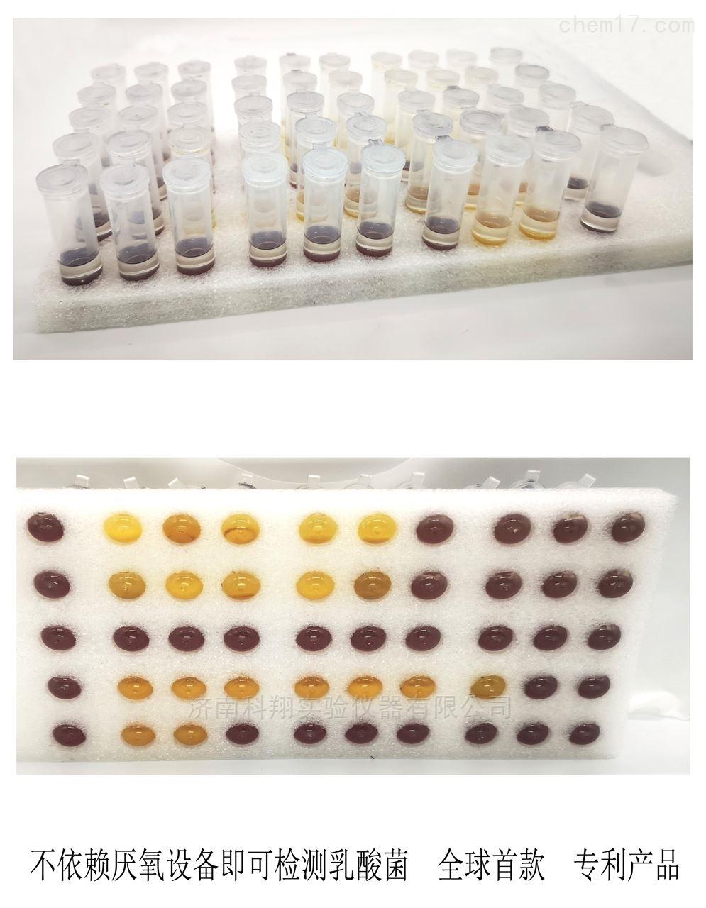 酸奶奶制品保健品乳酸菌快速检测试剂盒