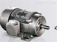 西门子SIEMENS同步电机1DY1100-0AA00-0AA1
