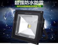 LED投光灯BCS135飞利浦灯具