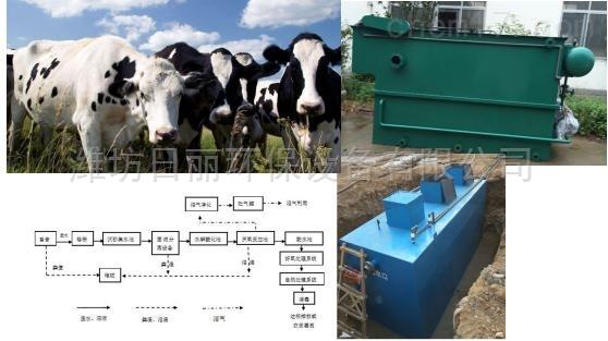 内蒙古肉牛屠宰污水处理设备RL地埋式一体化