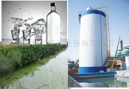 山东省酒精污水处理设备RLEGSB反应器