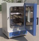 DGG-9620A大型立式干燥箱